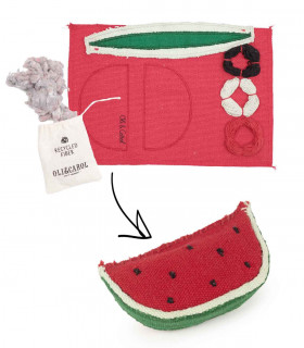 DIY Wally The Watermelon