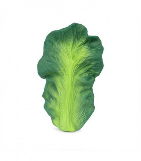 Kendall the Kale